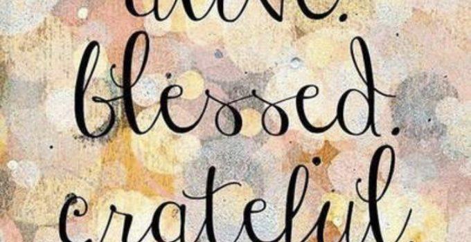 364 Days of Gratitude